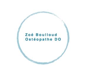 Zoe Boulloud Logo | Norkapp