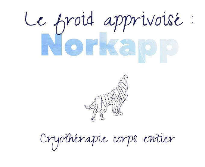 froid norkapp bordeaux cryothérapie